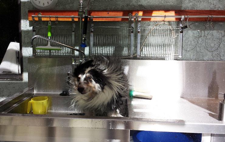 Stirling-bath-04