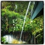 One Moment | The Coziness of Rain