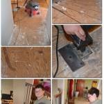 Operation Nasty-Carpet-be-Gone Update 1
