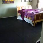 Operation Nasty-Carpet-be-Gone Update 2