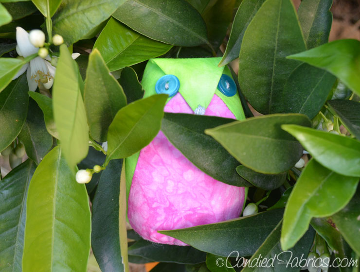 Spring-Greens-Owls-16