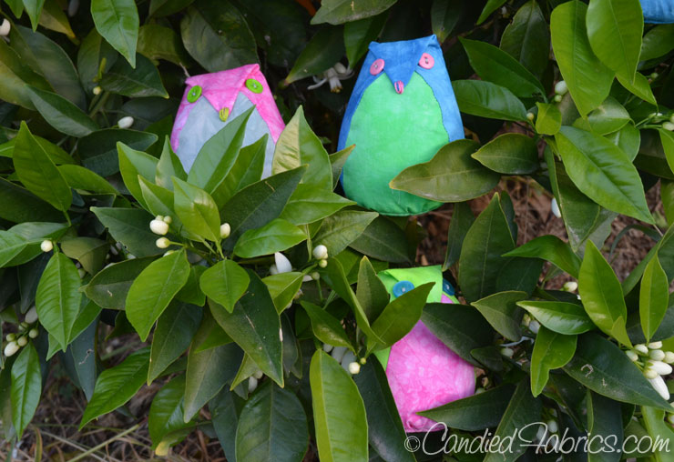 Spring-Greens-Owls-17