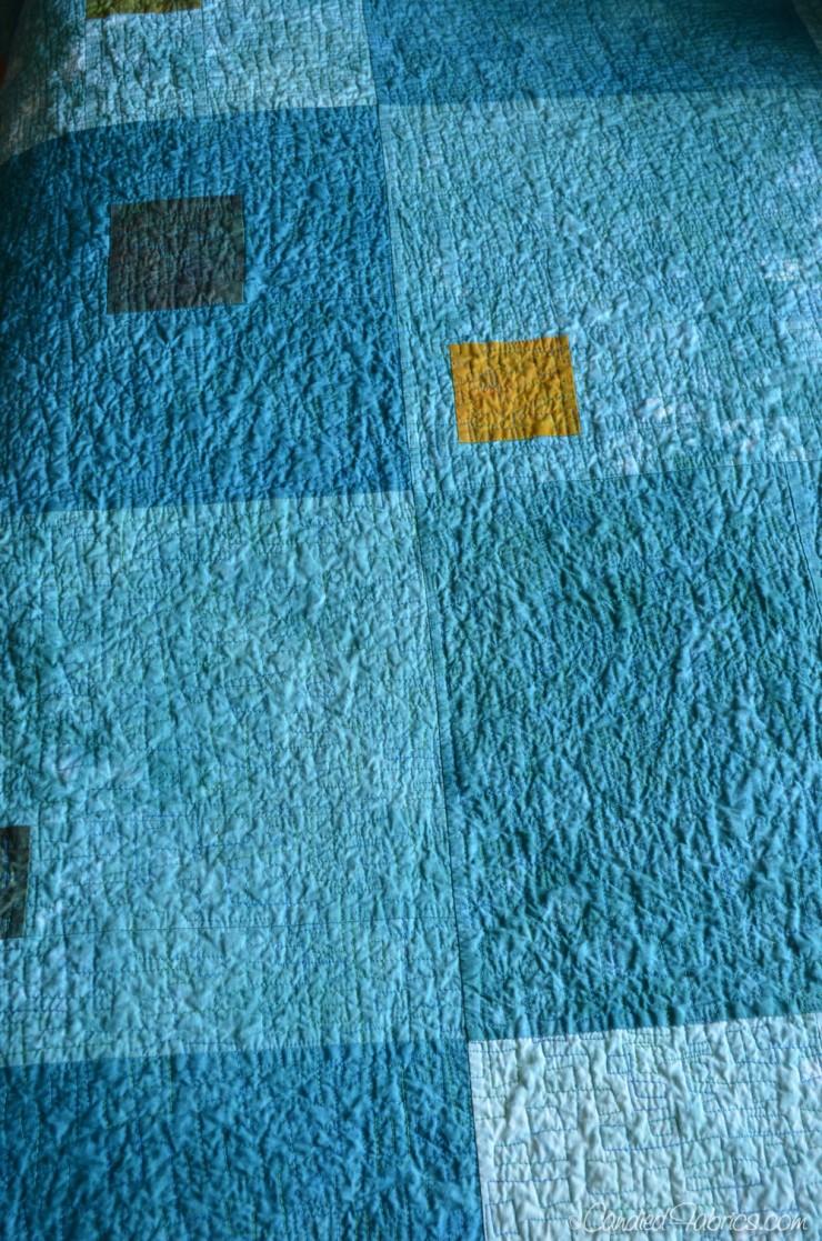 Modulating-Squares-Autumn-Splendor-38