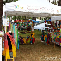 Show Report | Art in the Park 2014