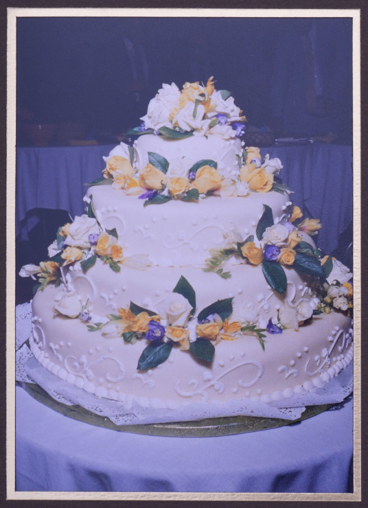 Candy-and-Andrew-got-married-cake