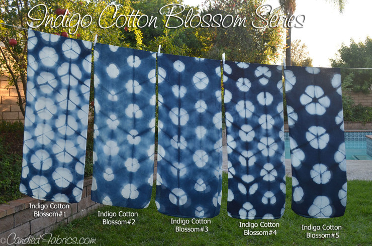Indigo-Cotton-Blossom-0-all