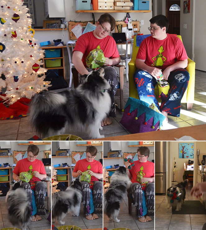 05-2015-Christmas-Day-Stirling