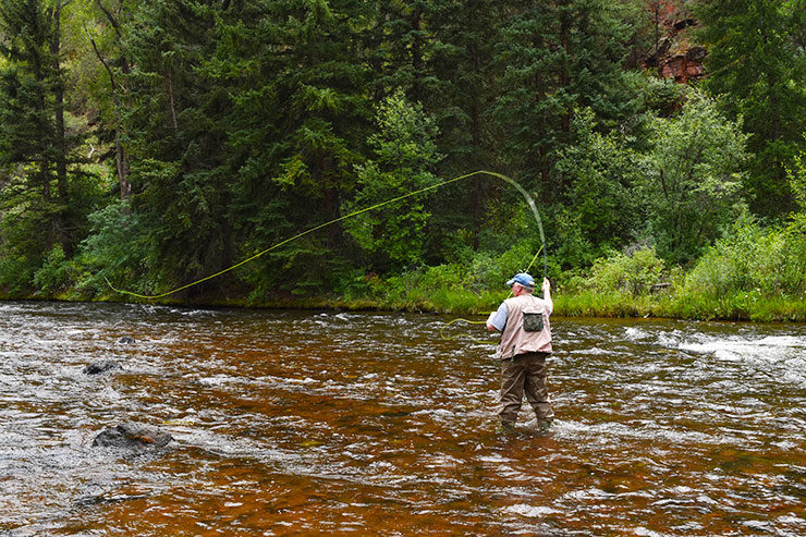 The beautiful country around aspen co candied fabrics for Aspen fly fishing